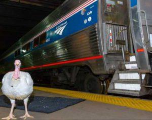 turkey-and-train